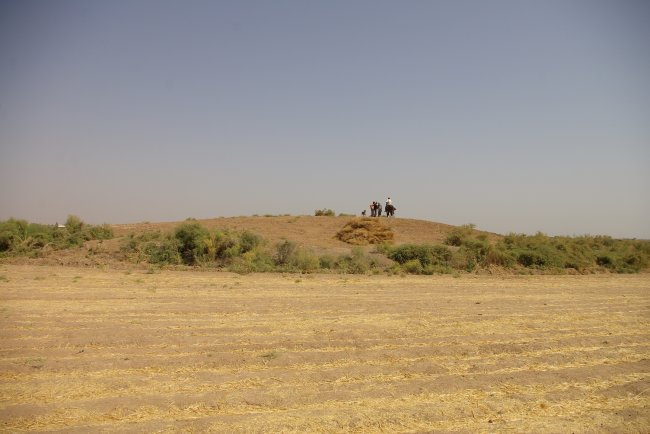 "Fig. 8 The site ""Tepa Sh013""."